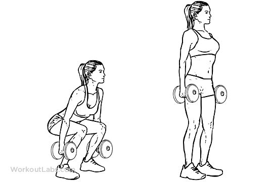 834df455372aed57e29eed322deb8617--dumbbell-squat-palms